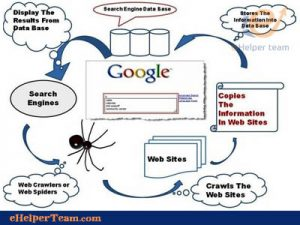 search engine spiders crawl sites